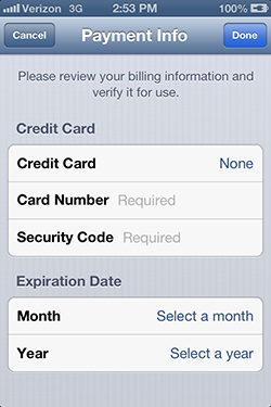iPhone Payment Information