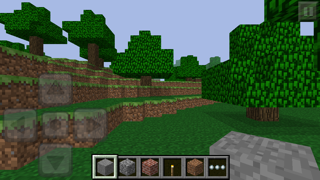 Result of a built Minecraft PE world